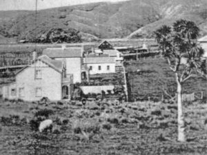 The little building beside the grassy lane, Steyne Avenue, is the iron shed used by Mrs Hanna for her school. It was used again for a period after WWI when the second school outgrew its one classroom. (Detail from C_4_57) Photo courtesy Pataka Art + Museum, Porirua