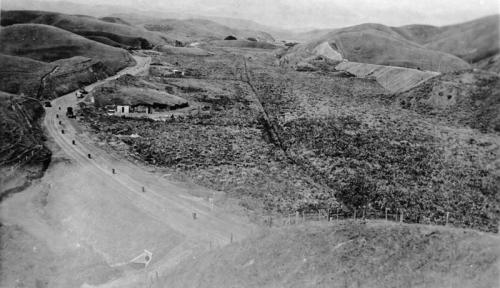 Taupo Wetland, c 1937.  Photo courtesy Pataka Art + Museum, Porirua, ref C.2.4