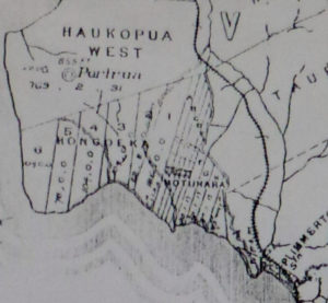 Troup and Moore bought part of the Motuhara Bock, marked in narrow stripes in centre of this map Map courtesy: Bernie Comerford collection